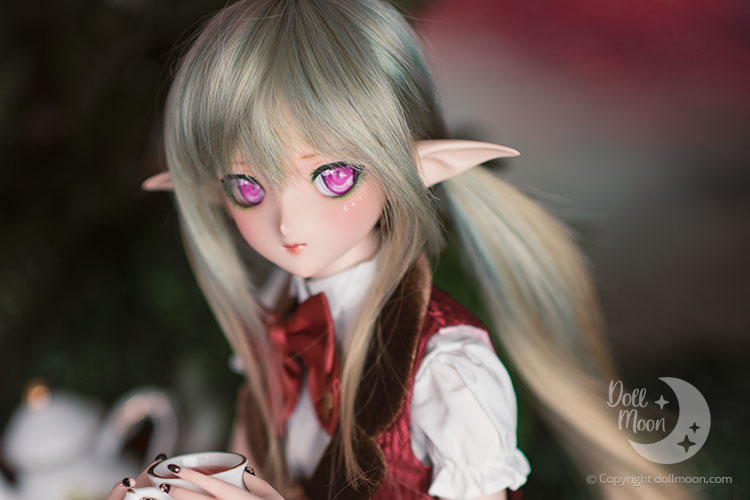 Limited Dollfie Dream Lottery