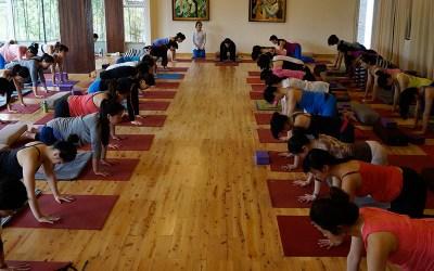 Why practice Prenatal Vinyasa Yoga?