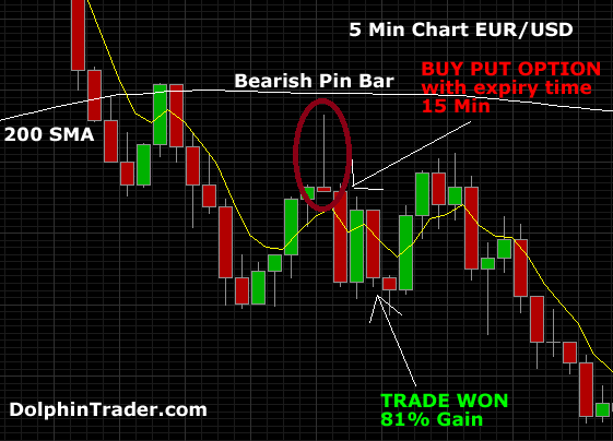 How to Trade Binary Options Using Pin Bars - Binary Options Signals Reviews