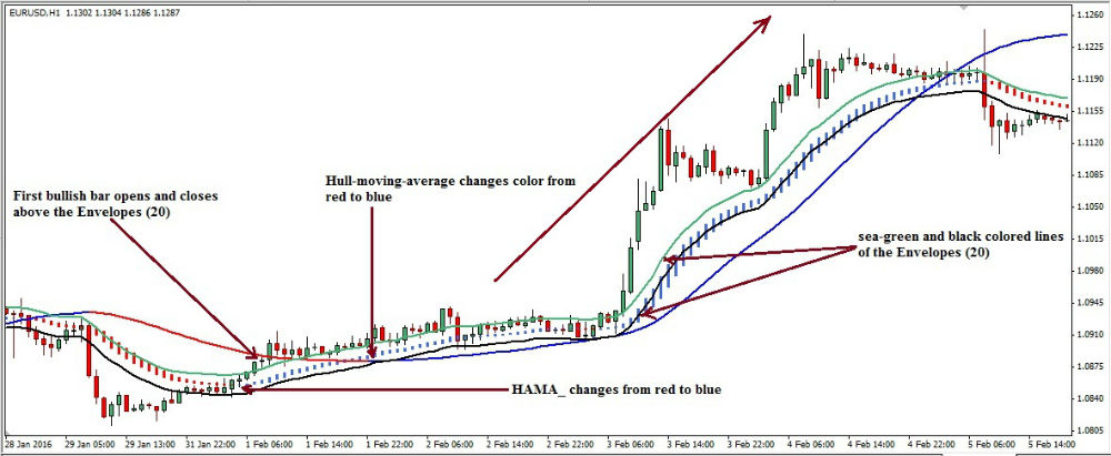 Hull-forex-trading-system