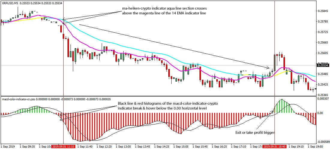Euro curs de investitie