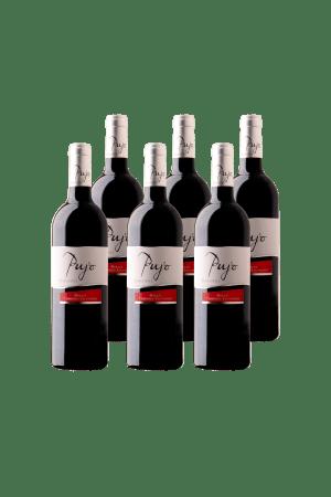 Vin rouge Pujo by Elle Côtes de Gascogne