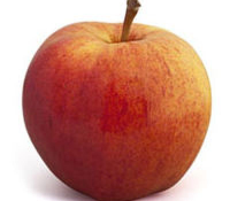 Pomme Royal Gala