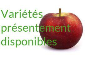 Pommes disponibles dès maintenant