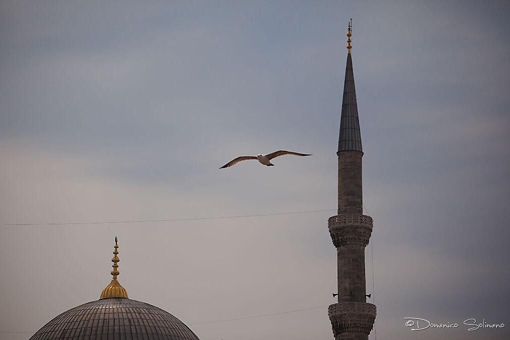 ©A Fly On Minaret