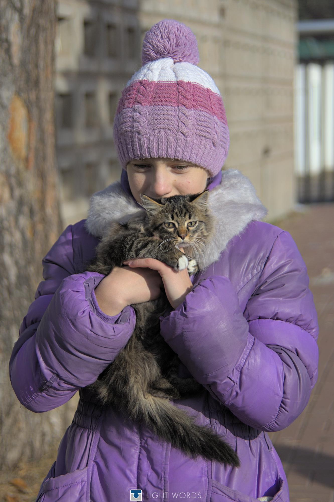 A Cat Love