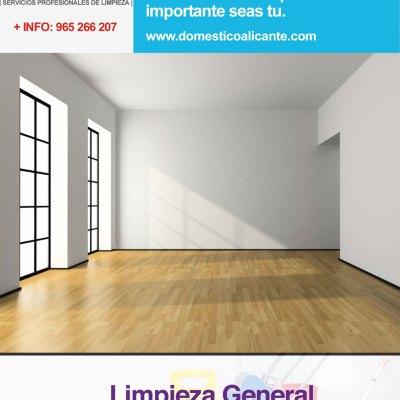 domestico-ofertas-limpieza-general Limpieza del Hogar - Doméstico Alicante