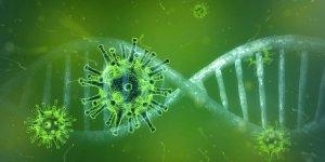 coronavirus-4833754_1280 coronavirus-4833754_1280