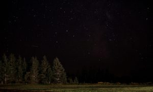 Image: Martin Cathrae, Starry Night (CC BY-SA 2.0).