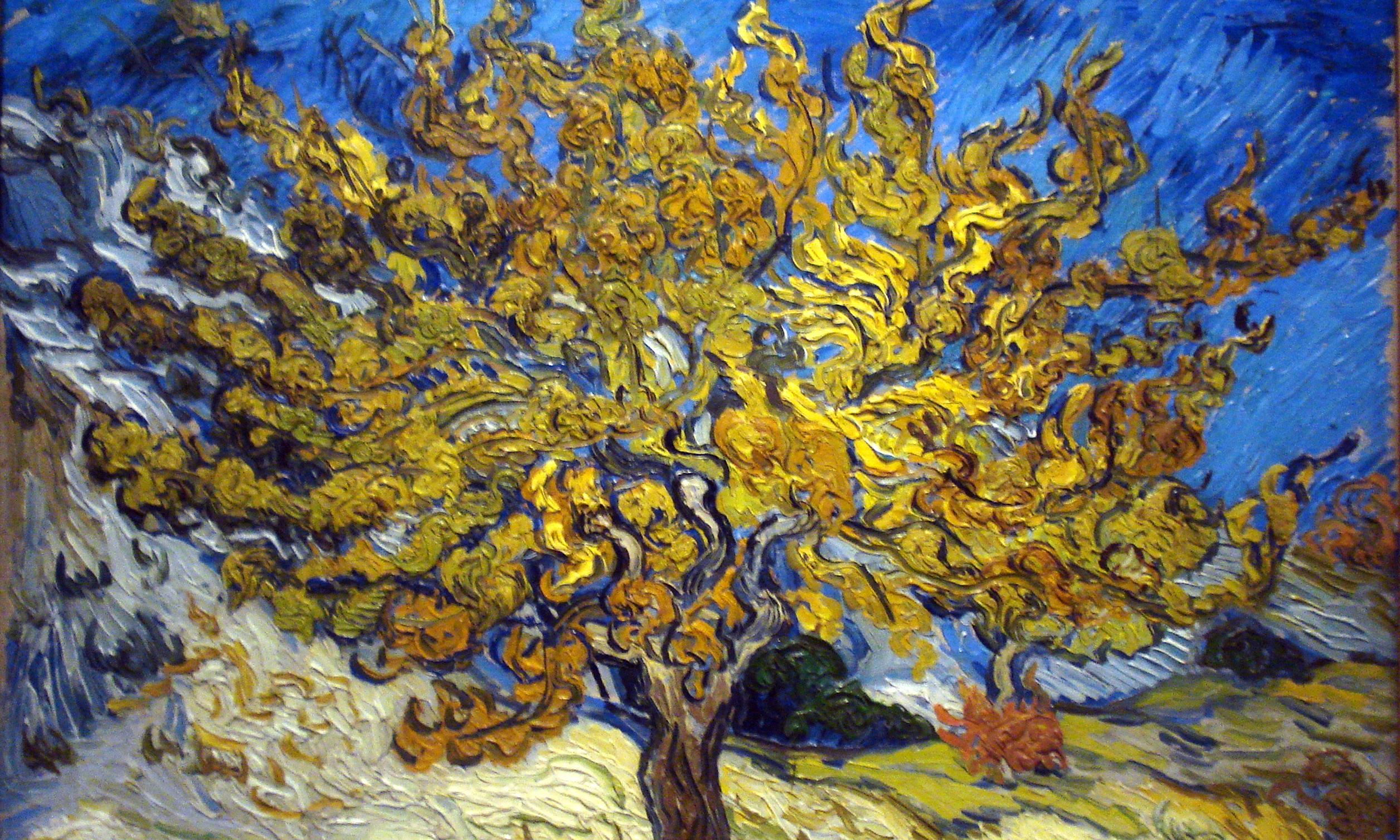 Image: Vincent Van Gogh, Mulberry Tree in Autumn