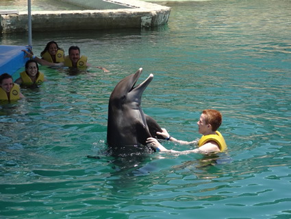 Ocean World Adventure Park, Marina & Casino - Dolphin Swim