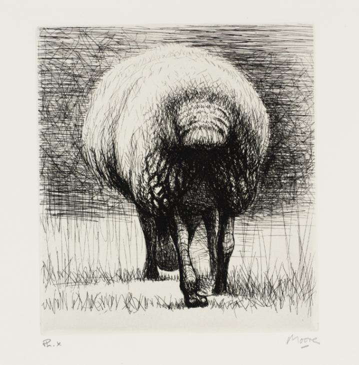 Sheep Back View 1972 by Henry Moore OM, CH 1898-1986