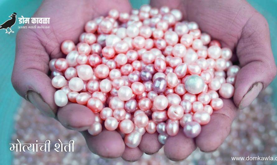 Pearl Farming करून वर्षाला लाखों रुपये कामवणारा विनोद यादव
