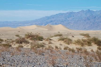 Mesquite Flat Dunes - Death Valley National Park