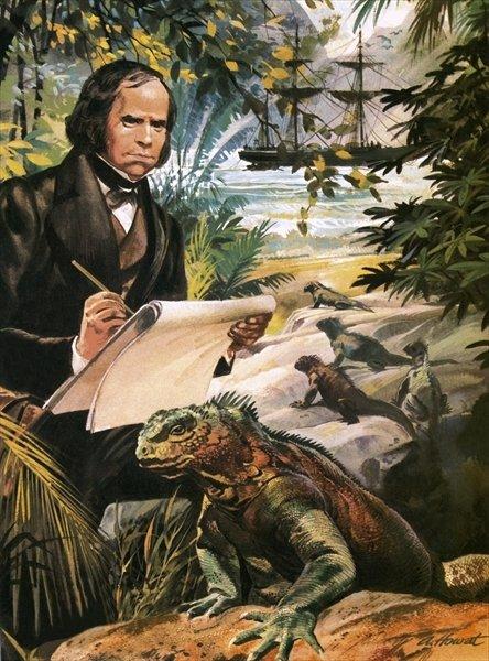 Darwin-domonthego