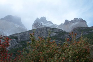 Torres-Del-Paine-National_Park-WTrek-Patagonia-DomOnTheGo 47