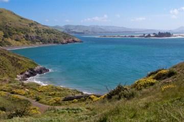 Dunedin-NewZealand-DomOnTheGo 47