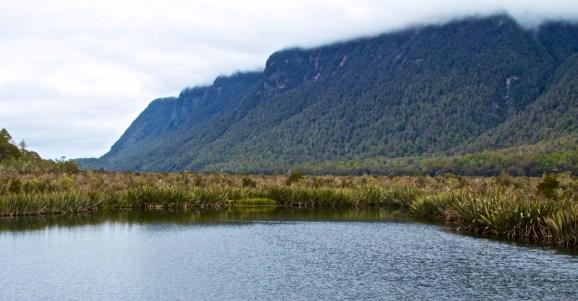 Milford-Sound-NewZealand-DomOnTheGo 139new