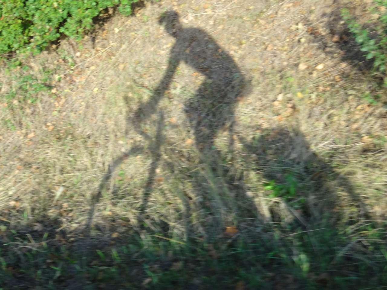 Des Radlers Schattenwurf