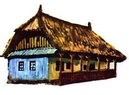 Casa din Radesti_Alba