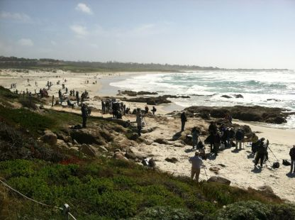 Hundreds of artists painting at the beach.