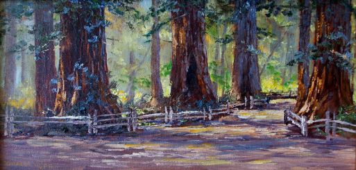 Pathway in the Redwoods 8x16 Oil