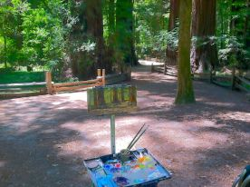 Painting in Henry Cowell State Park.