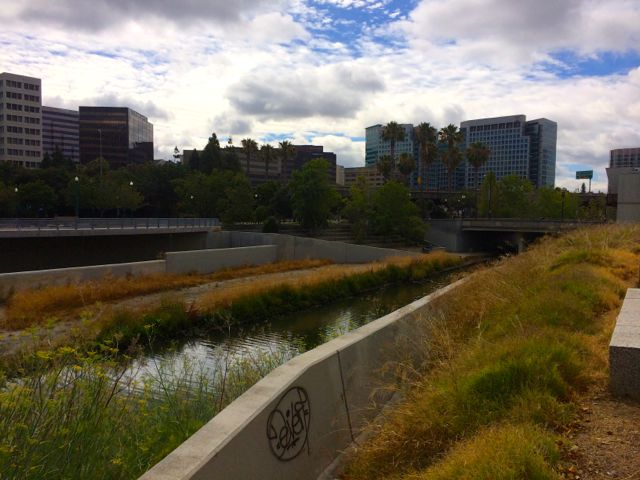 The Confluence where the Los Gatos Creek joins the Guadalupe River.