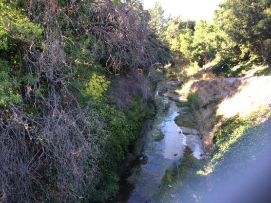 Saratoga Creek seen from the chain link fence along Benton Str.