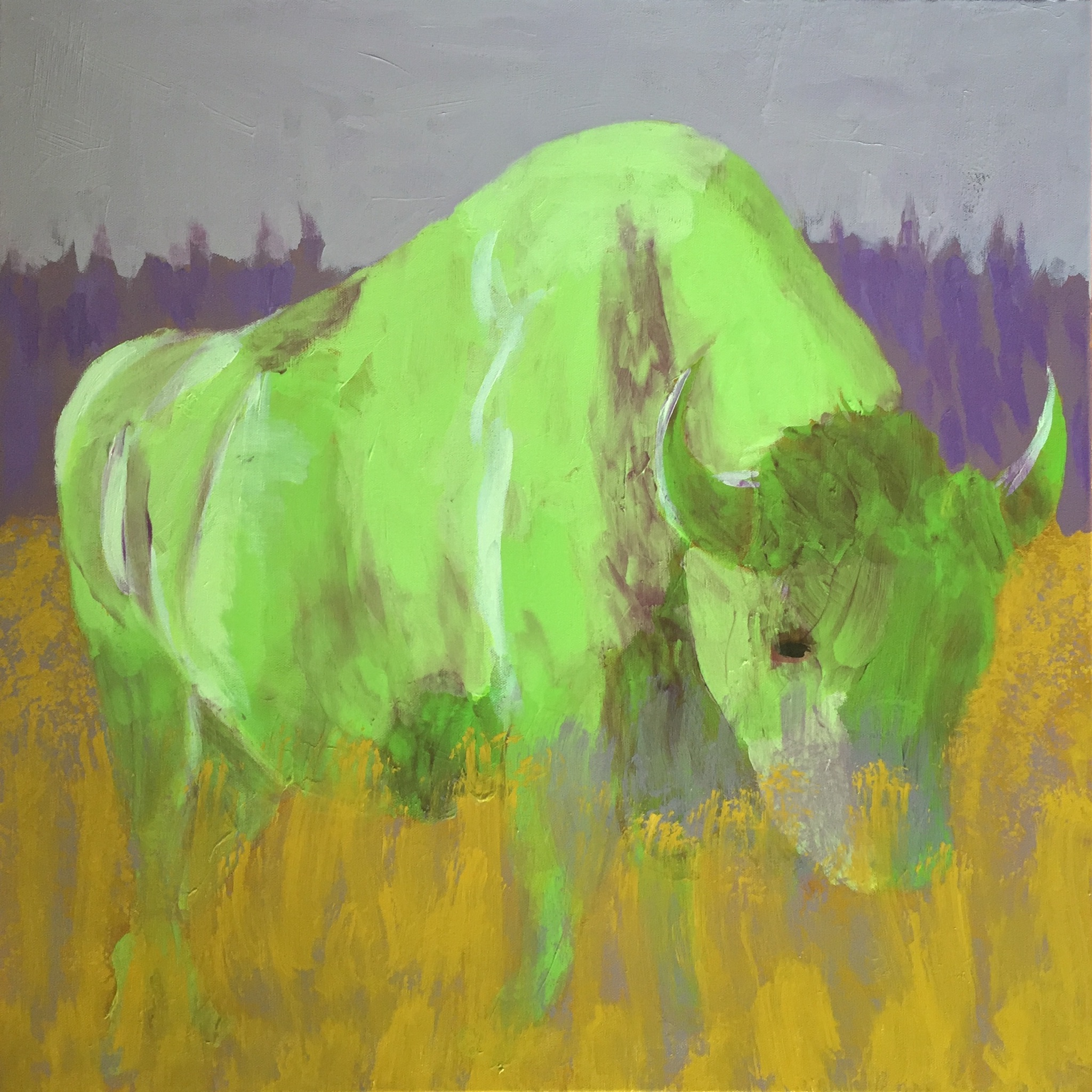 Bison - SOLD - Prints Available