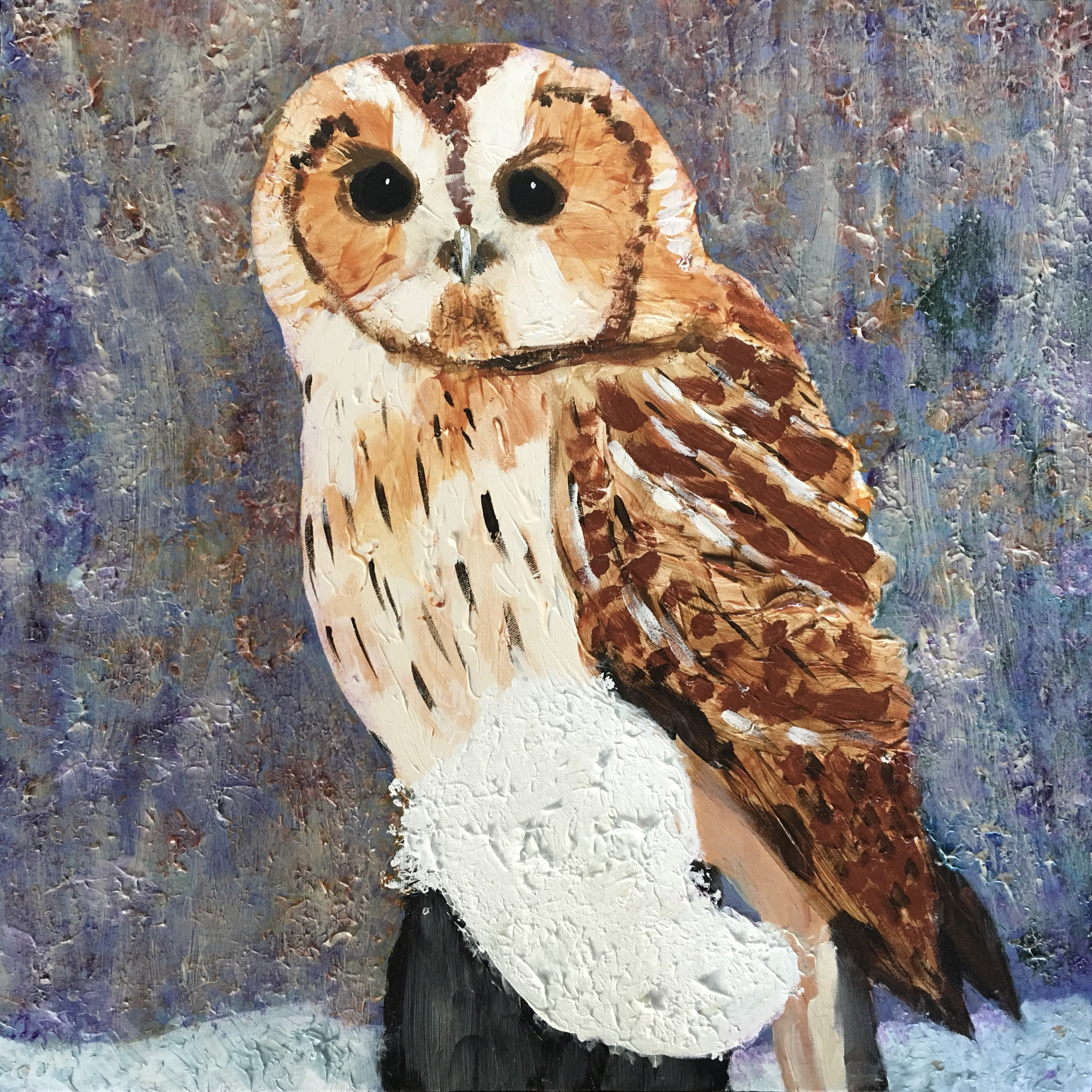 Owl on Snow - SOLD - Prints Available