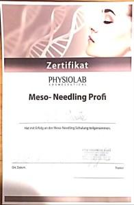Meso-Needling Zertifikat 2019