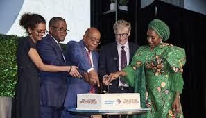 Mo Ibrahim Foundation Leadership Fellowship afdb.