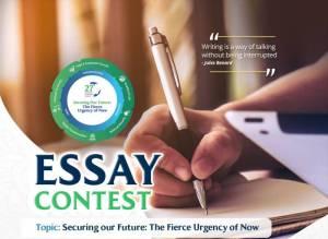 NESG Essay Competition