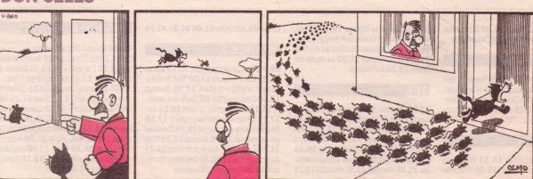 Don Celes manda a su gato a cazar una rata