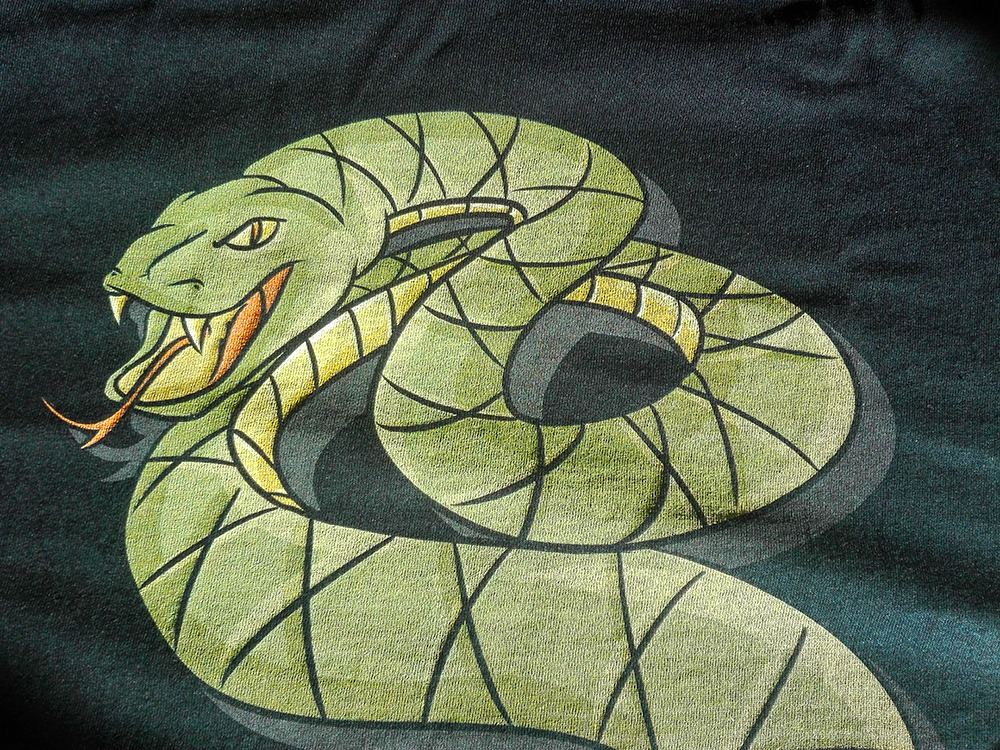 neatoshop, tunnel snakes rule, close up, review, snakes, design, fallout, fallout 3, gaming,