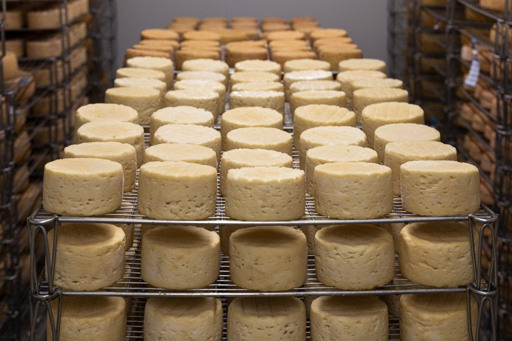 quesos típicos de Salamanca