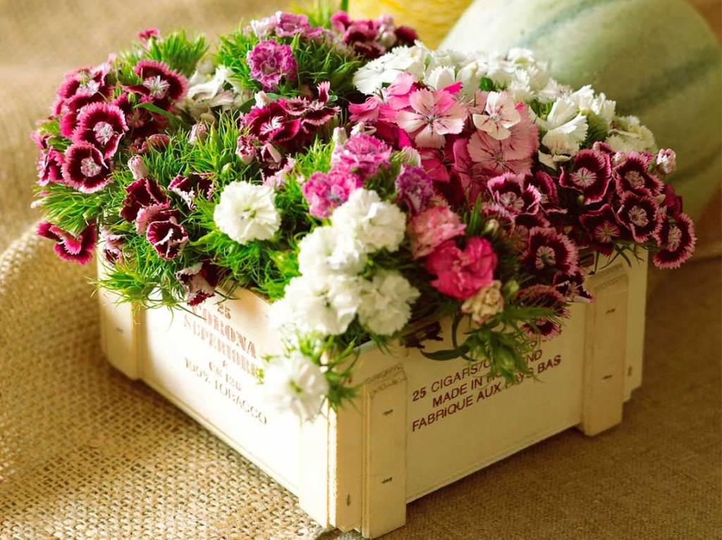taller de arreglos florales para decorar tu casa