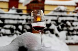 Wine Winter Fest 2017