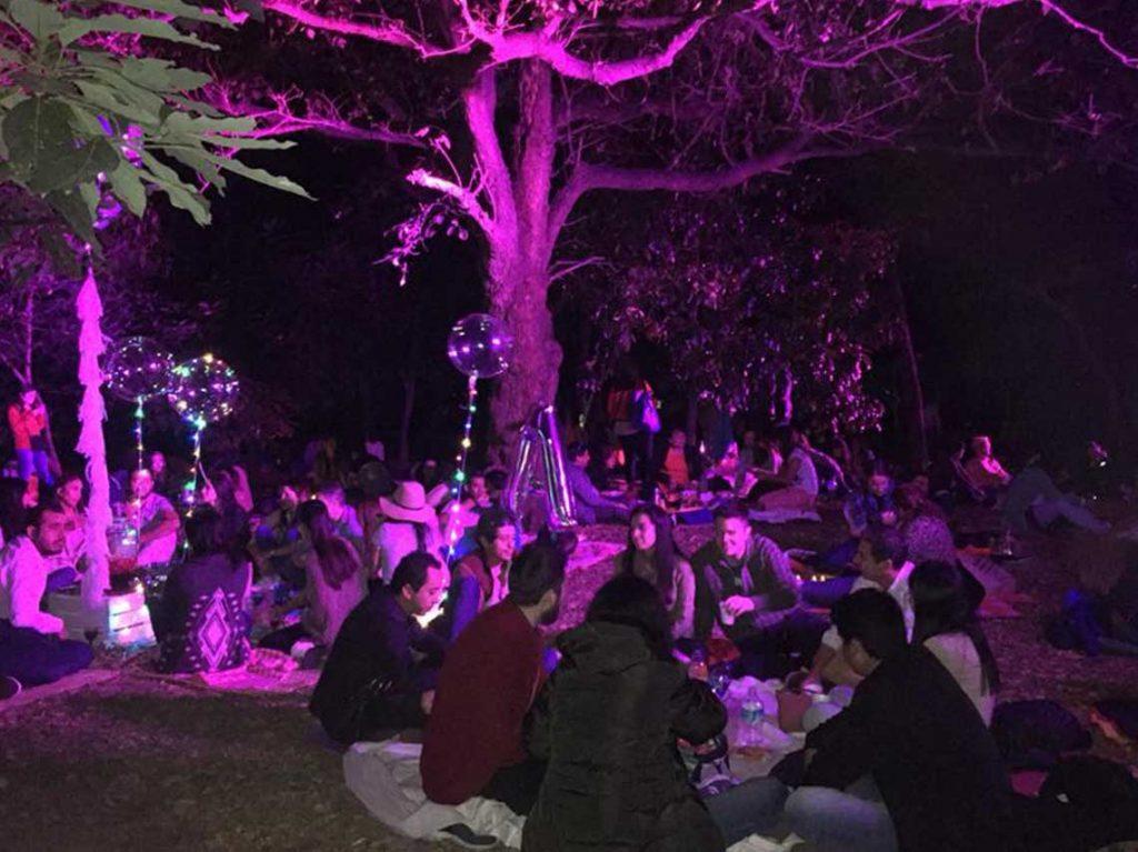 picnic-nocturno-chapultepec-ciudadanos-en-red