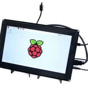10.1inch HDMI LCD (with case)