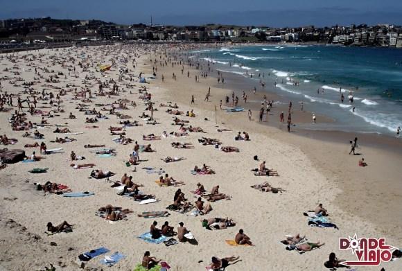 Bondi Beach, apta para el surf