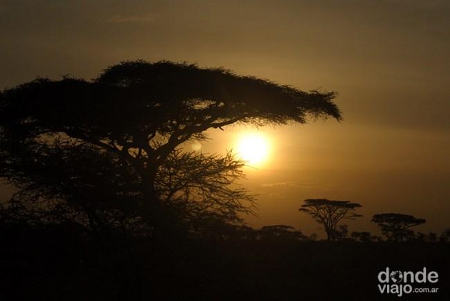 Atardecer en el PN Serengueti