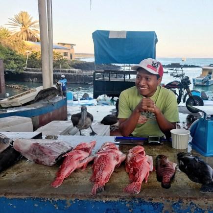 Venta de pescados en Puerto Ayora
