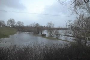 Flooded Field Malin