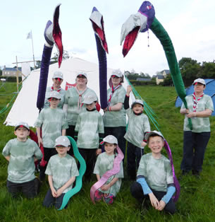 7th Donegal (Killybegs) Beaver Scouts who were Snakes for the weekend.  ((c) North West Newspix)