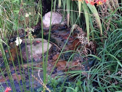 The raw sewage flows through Shaun Boyle's land.