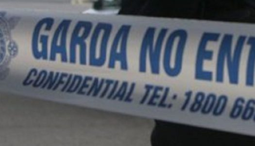 Gardai issue safety plea after woman attacked at home