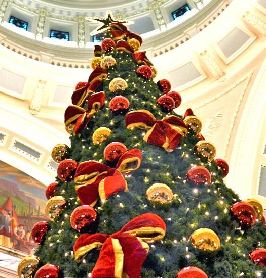 Christmas Tree inside Belfast City Hall