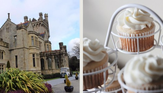 Cup Cakes from the Castle